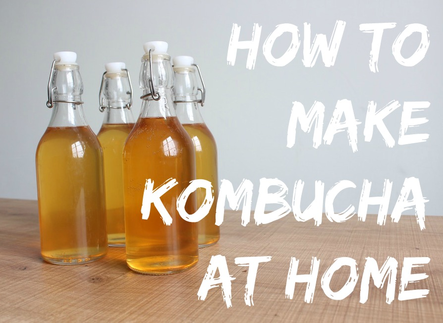 How-to-Make-Kombucha-Workshop